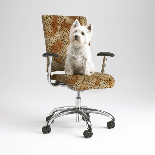 Leopard print office chair with small white Highland Terrier - Furniture photography